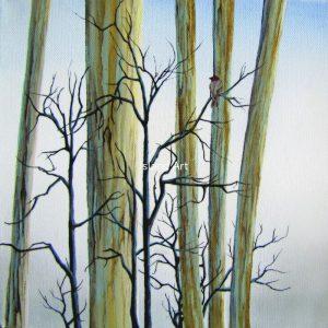Dione Dolan-Winter