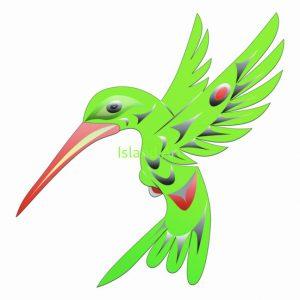 Doug LaFortune-Hummingbird