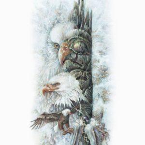 Judi Wild-Eagles Of Ninstints