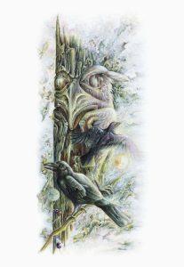 Judi Wild-Ravens Of Ninstints