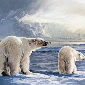Lissa Calvert-Arctic Light