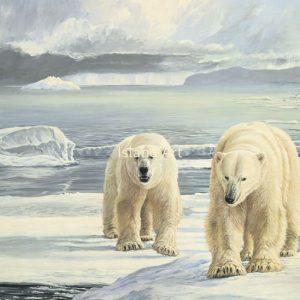 Lissa Calvert-Masters of the Arctic