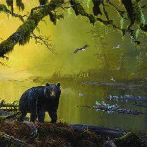 Mark Hobson-Black Bear On Tranquil River