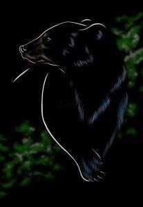 Stefanie Clark-Black Bear