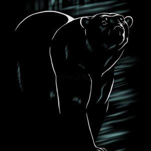 Stefanie Clark-Polar Bear