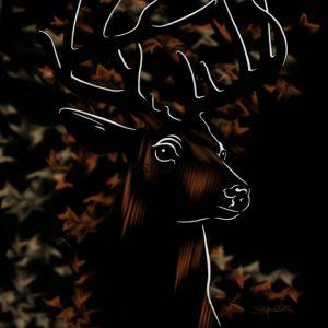 Stefanie Clark-White Tail Deer
